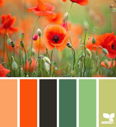 цветовые палитры seeds