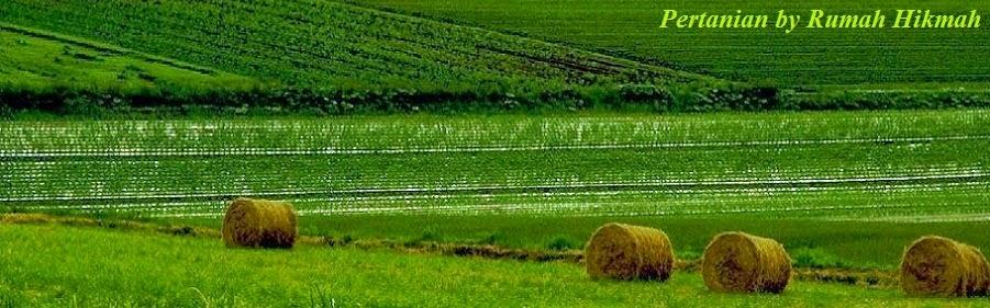 Pertanian by Rumah Hikmah