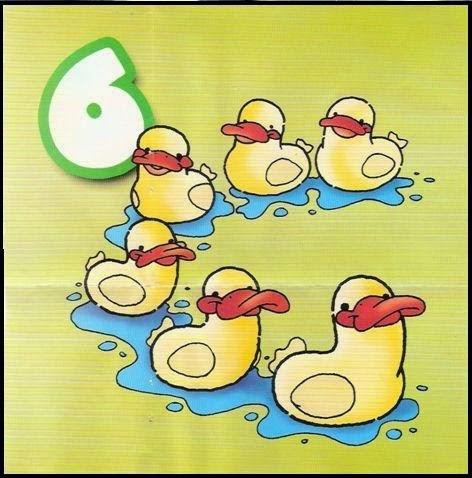 REPASO Nº6