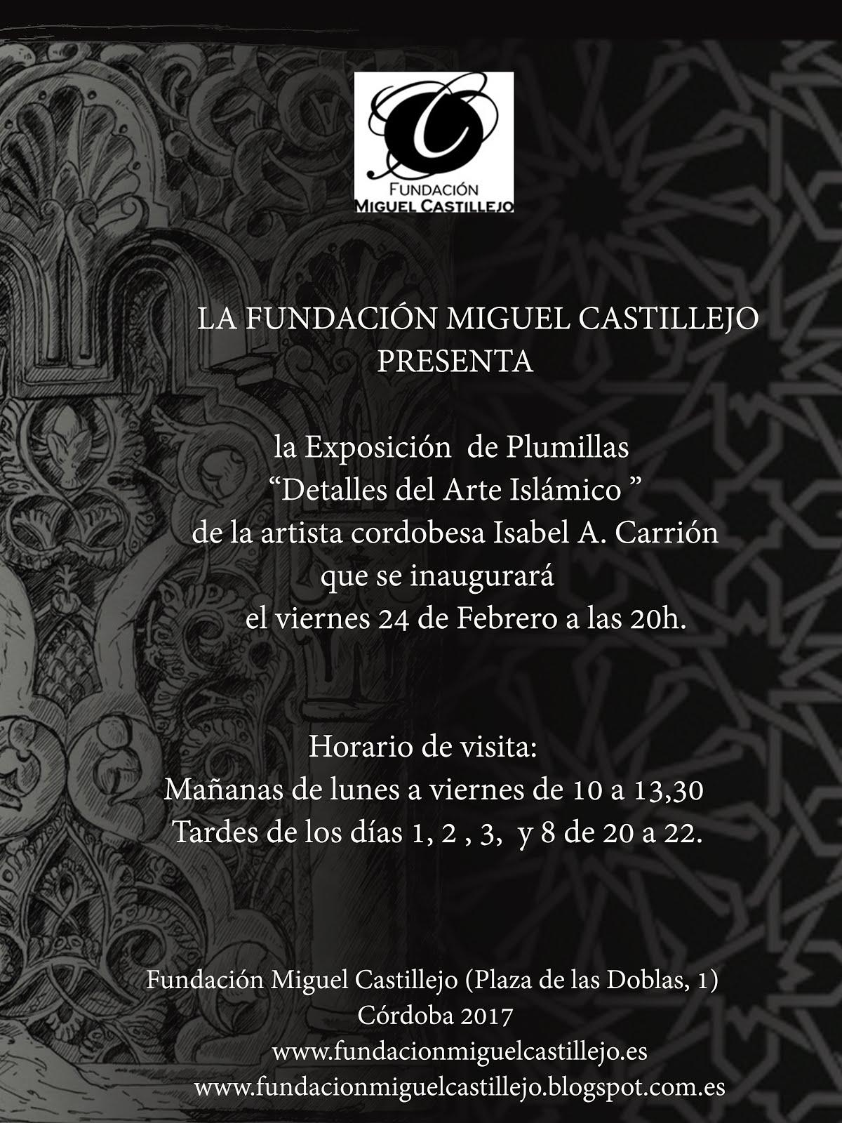Exposiciones 2017: Fundación Miguel Castillejo hasta el 15 de marzo.