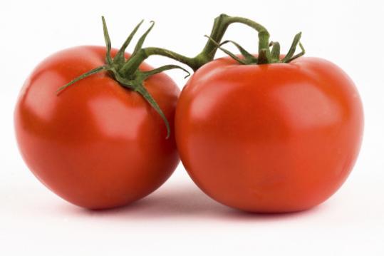 http://1.bp.blogspot.com/-c5CkoO6ZPPQ/Th8sw7RV-jI/AAAAAAAAAOY/YcqZa7QErHA/s1600/tomato.jpg