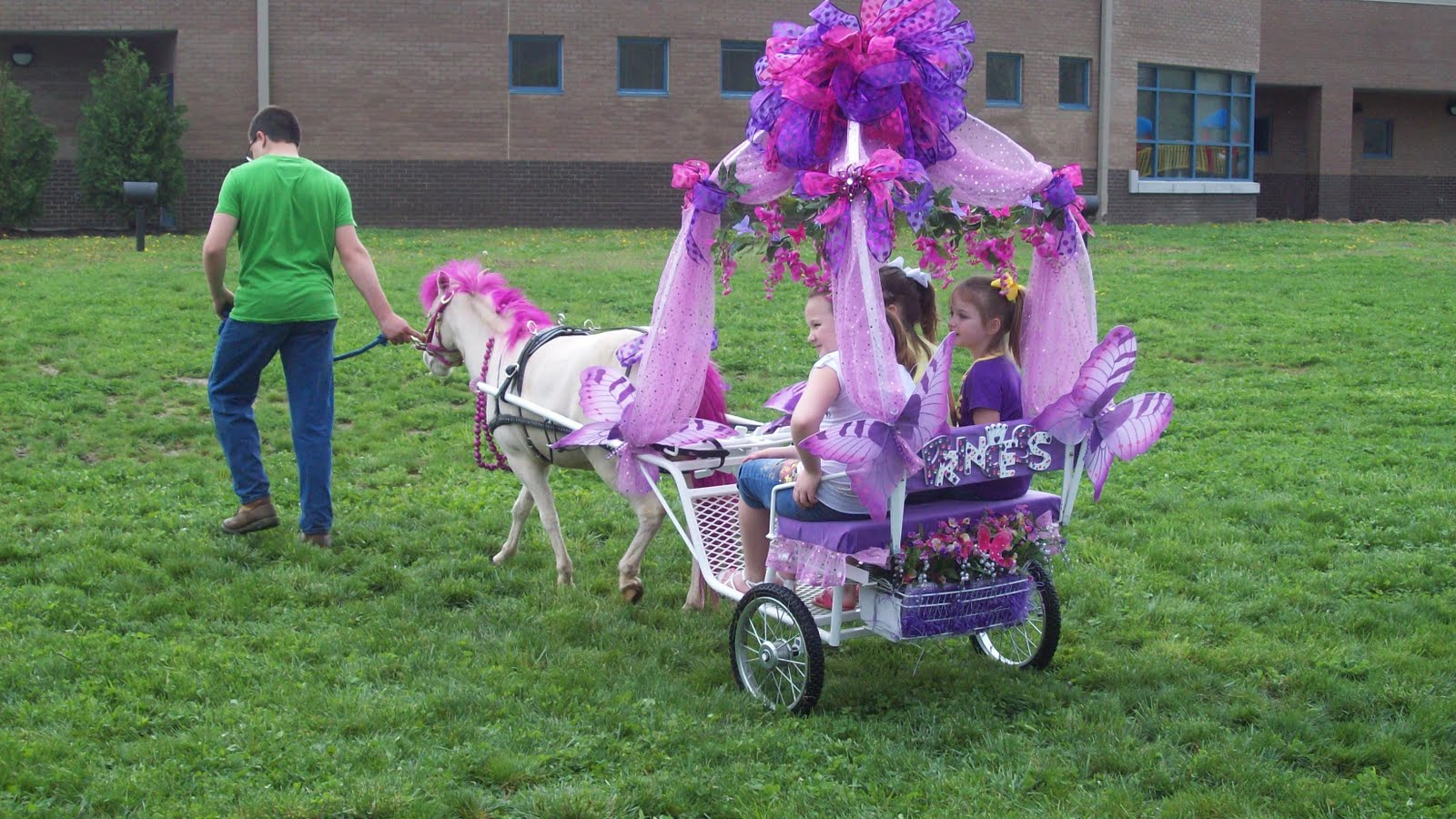 http://1.bp.blogspot.com/-c5J-gLUSgJE/TaPNq1B1LDI/AAAAAAAAACs/YTIiHA33Isg/s1600/WV2011+-+40+-+Pink+Pony.JPG