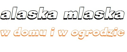 alaska mlaska