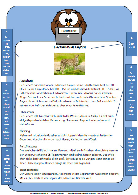 wahnsinnsklasse - Muster Tierbeschreibung