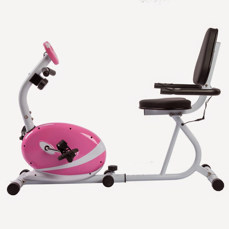 sunny health u0026 fitness pink magnetic recumbent bike u003eu003e