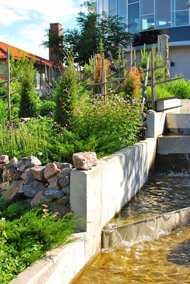 Linnanmäki - Vesiputous ja istutukset