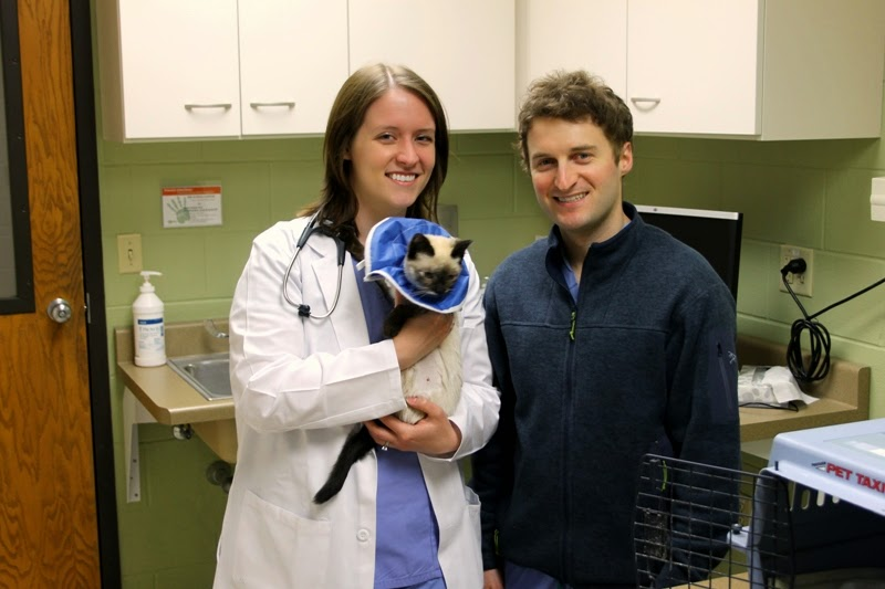 Dr's Walker and Kroner of the U of Madison veterinary care