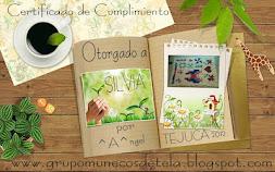 Certificado Tejuca 2012