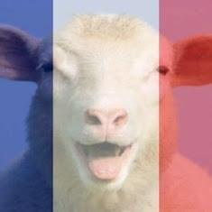 Šest způsobů jak zareagovat na pařížské útoky