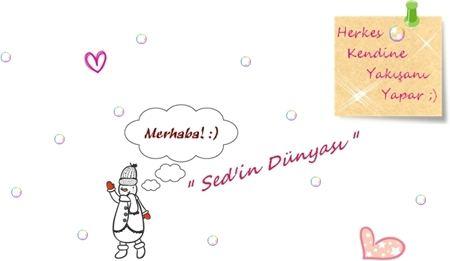 sedin-dunyasi-blog