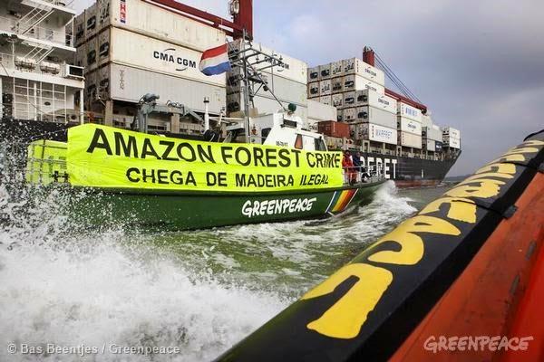 Fechando o cerco contra a madeira ilegal