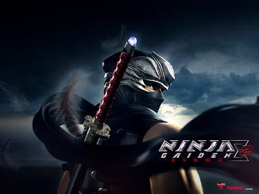 #17 Ninja Gaiden Sigma Wallpaper