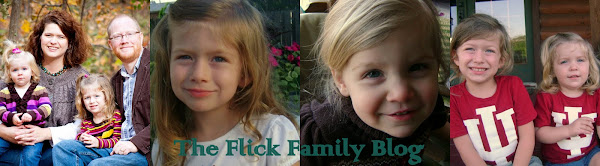 The Flick Family Blog