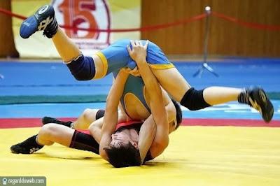Images drôles et insolites catégorie Sport - Combat v2