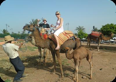 pregnant woman riding a camel, pregnant in Morocco