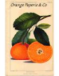 Orange Paperie & Co
