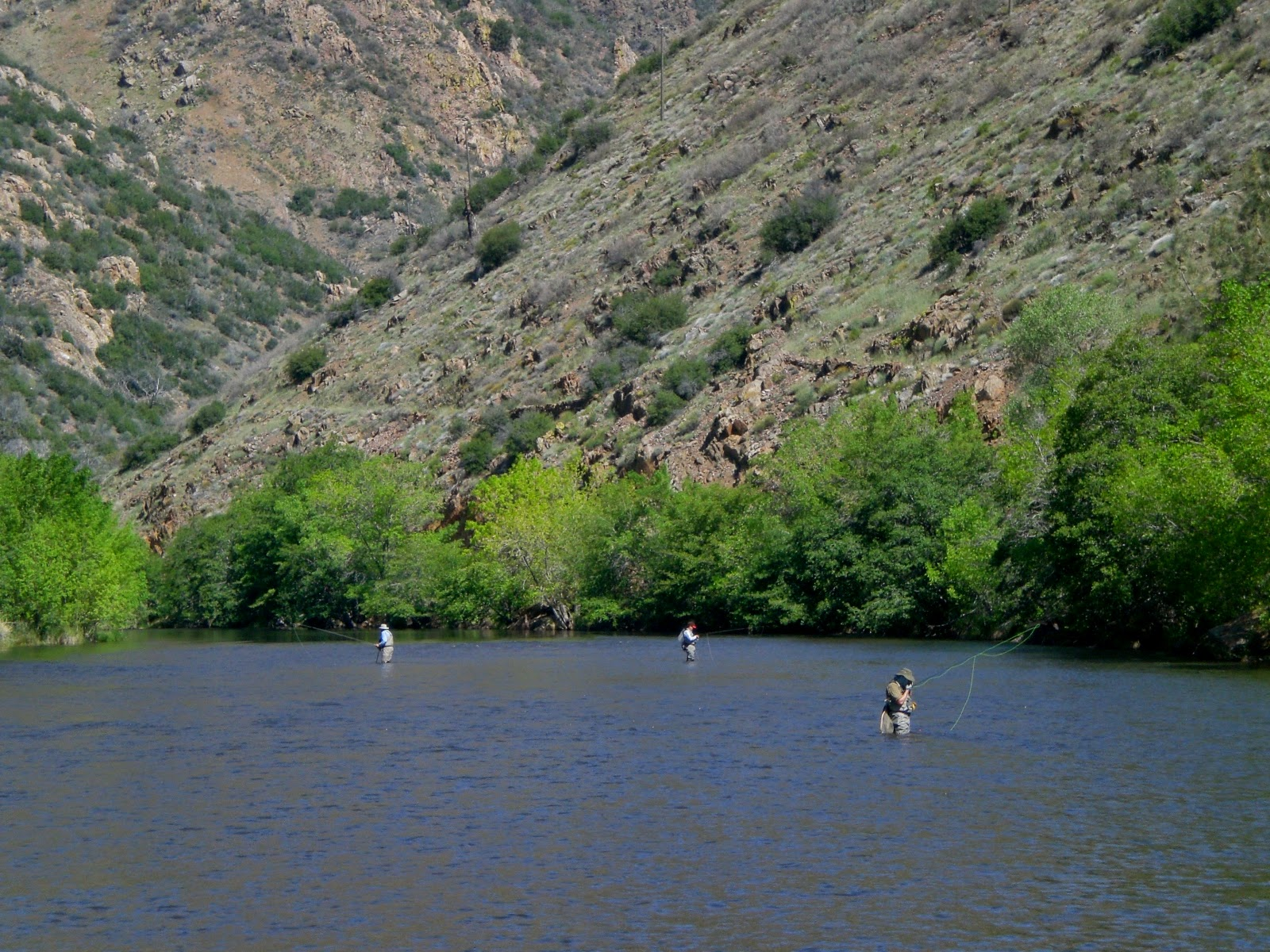 Life in motion fly fishing the upper kern river sequoia for Kern river fishing spots