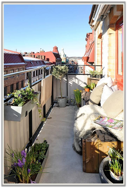 Pics of creative wings febbraio 2012 - Terrazzi arredati e fioriti ...