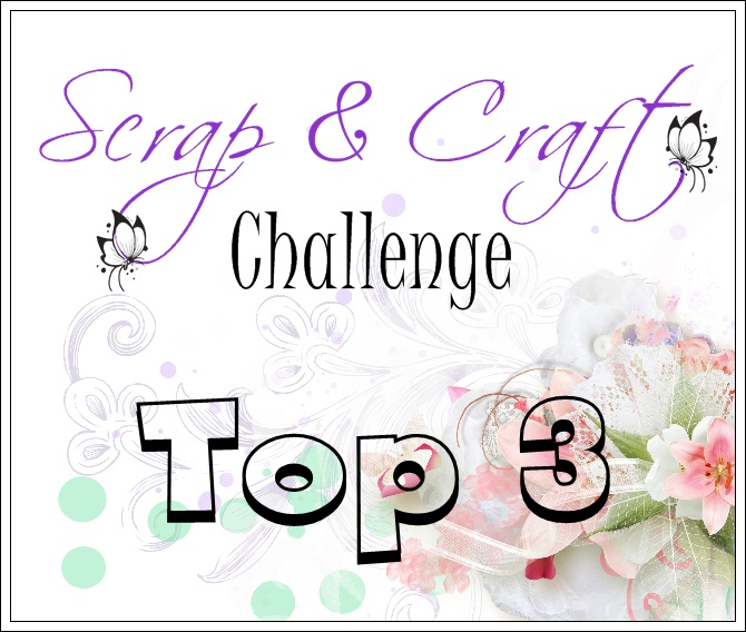 top 3 Scrap and craft