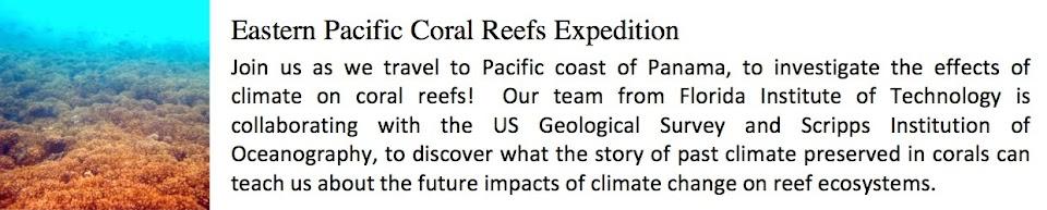 Panama Coral Reefs