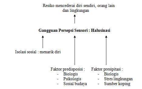 Pathway Halusinasi