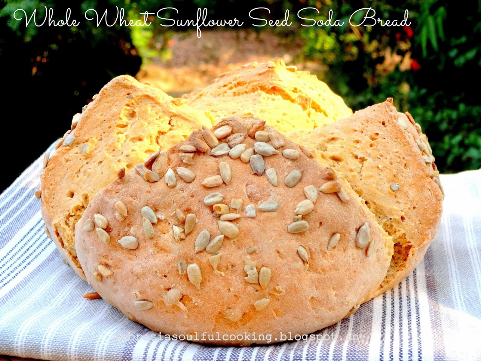 AMBROSIA: Whole Wheat Sunflower Seed Soda Bread