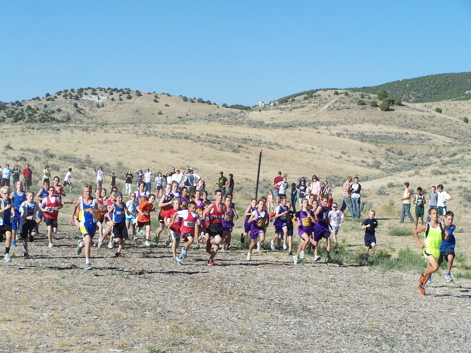 tiger grizz cross country meet 2012 olympics