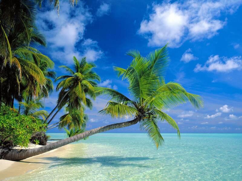 Hawaii Beaches Information Amp Photographs World