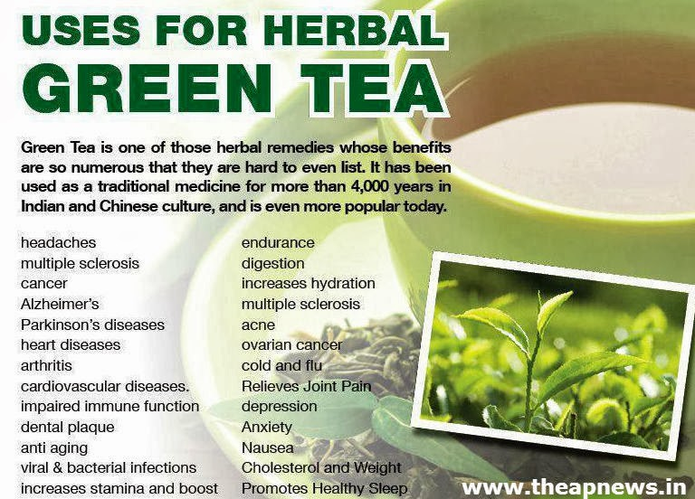 green tea benefits essay Other long term studies on green tea's heart benefits have associated it with long term heart disease prevention men and women equally benefit from green tea.