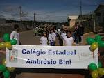 Em Breve Artigos e Fotos do Colégio Ambrósio Bini - Almirante Tamandaré