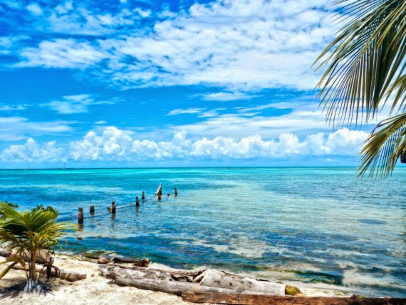 https://www.etsy.com/listing/195488098/secluded-beach-on-caye-caulker-belize?ref=favs_view_1
