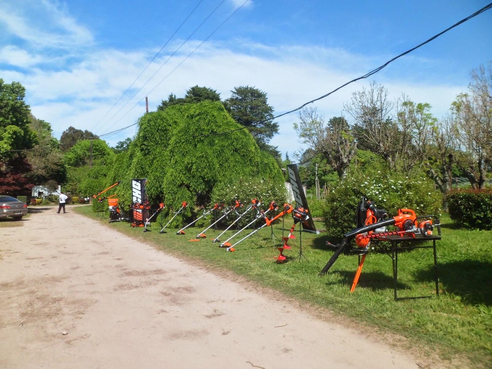 Buenos aires forestal jornada de capacitaci n en arbolado for Viveros en la plata