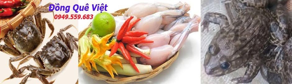 Đồng Quê Việt