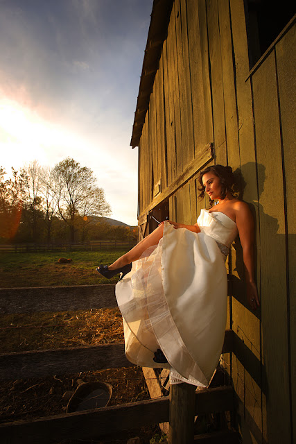 bride on fence mount vernon farm whysall photography
