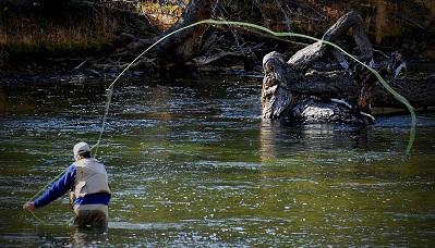 Colorado fly fishing colorado outdoor activities for Fly fishing in colorado