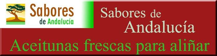 Aceitunas para aliñar- preparación aceitunas - venta de aceitunas en crudo - recetas de aceitunas