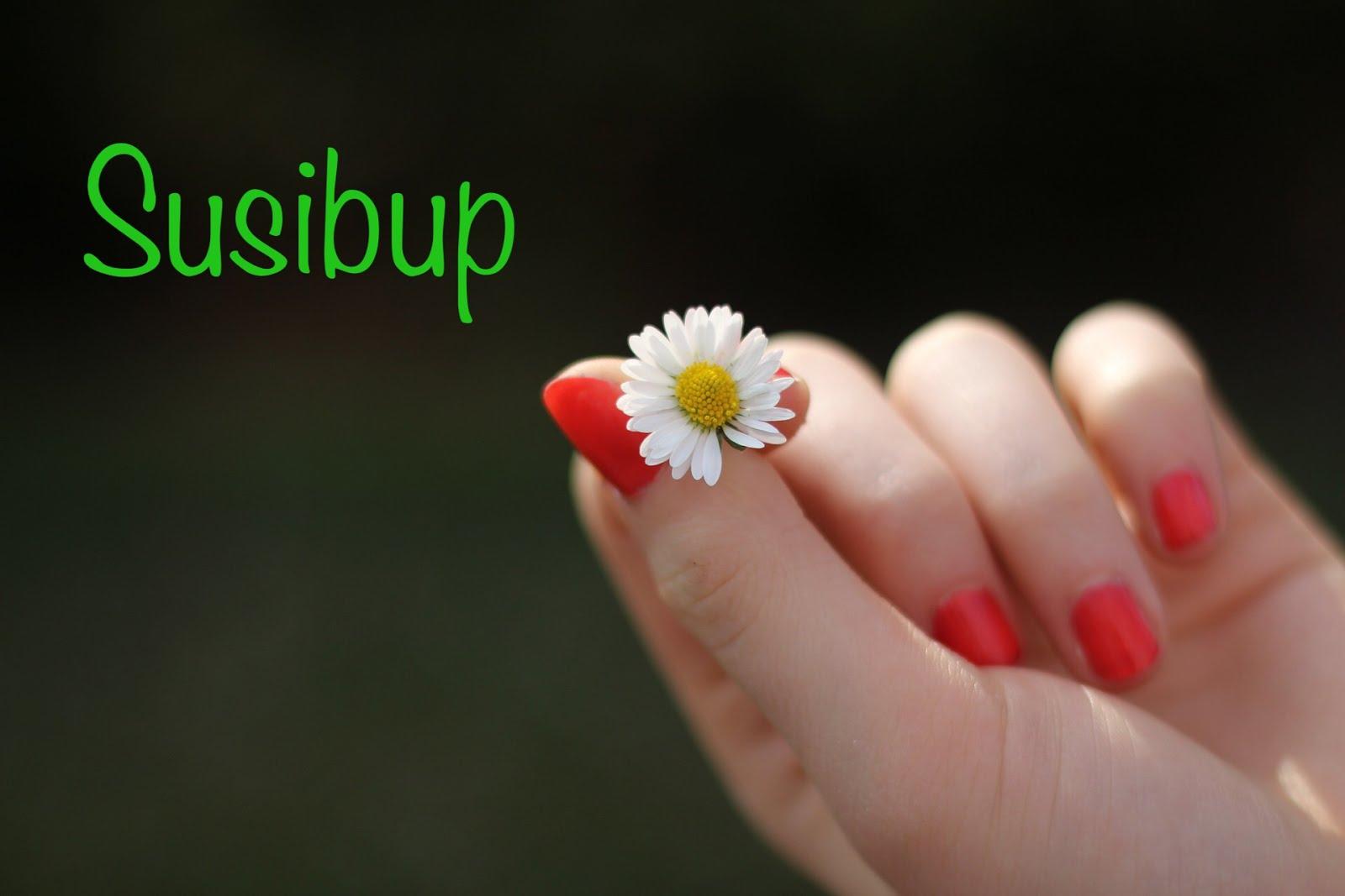 El blog de Susibup