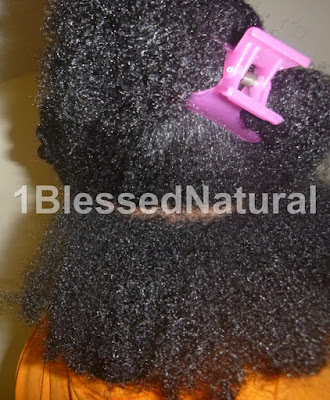 Natural Goddess Hair Pudding