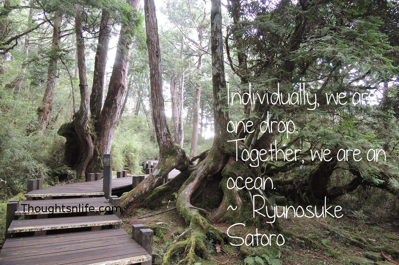 Thoughtsnlife.com: Individually, we are one drop. Together, we are an ocean.  ~   Ryunosuke Satoro