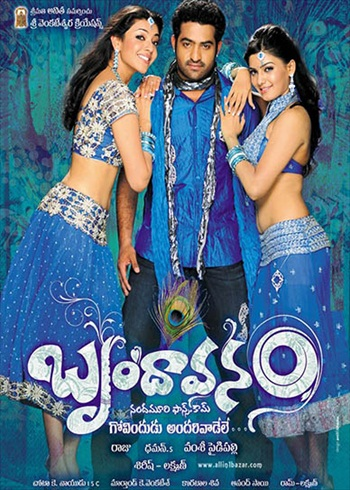 Brindavanam 2010 Dual Audio HIndi Bluray Download