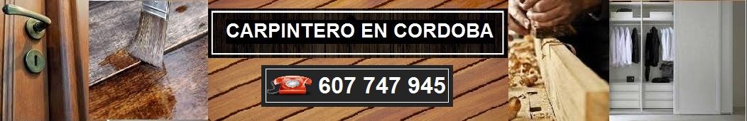 CARPINTERO EN CORDOBA ECONOMICO