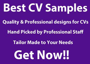 Best CV Samples