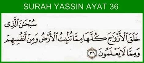 Doa Pengasihan Untuk Memikat Hati Paling Mustajab