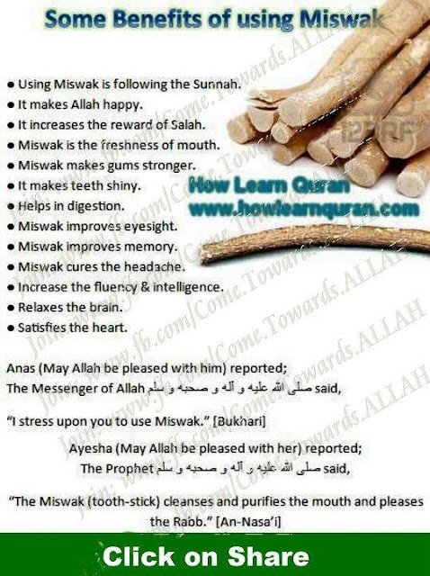 Benefits Of Using Miswak Image