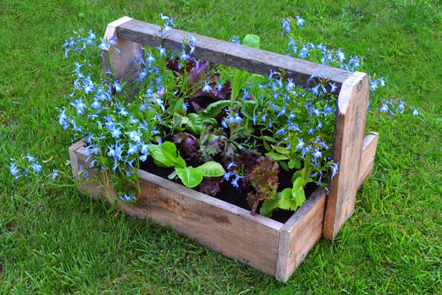 Pallet project diy rustic trugs lovely greens for Planters made out of pallets