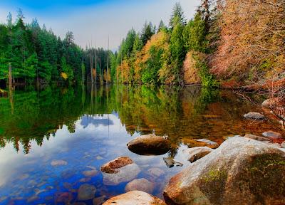 Lago de aguas cristalinas junto al bosque de pinos verdes