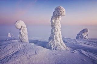 Resultado de imagen de Centinelas del Ártico, Finlandia