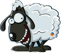 Benvinguts a la terra de l'ovellot de Canovelles
