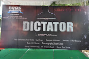 Dictator movie launch photos-thumbnail-1
