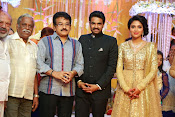 Amala paul vijay reception-thumbnail-30